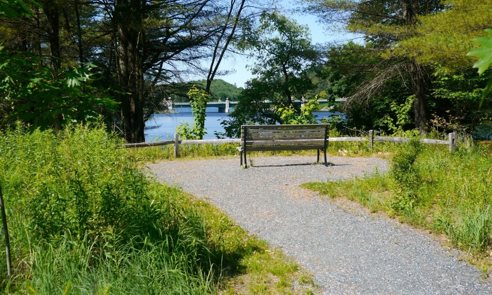 The Meadow Walk offers a peaceful setting for resting by the Connecticut River