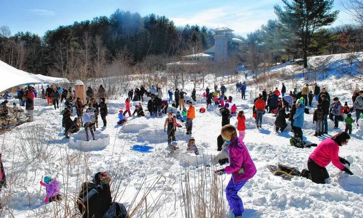 Construct an igloo and enjoy the season with one of the museum's longest-running traditions