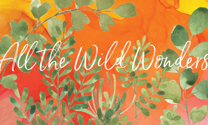 The Fiddlehead Fling is the Montshire's annual benefit auction. This year's event theme is All the Wild Wonders.