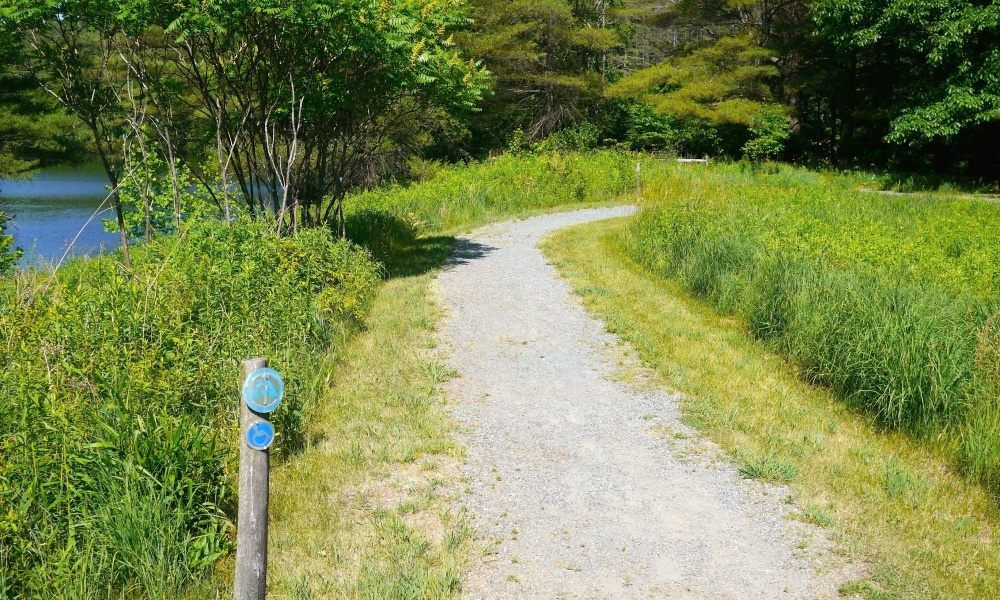 Enjoy a short walk in the Quinn Nature Preserve