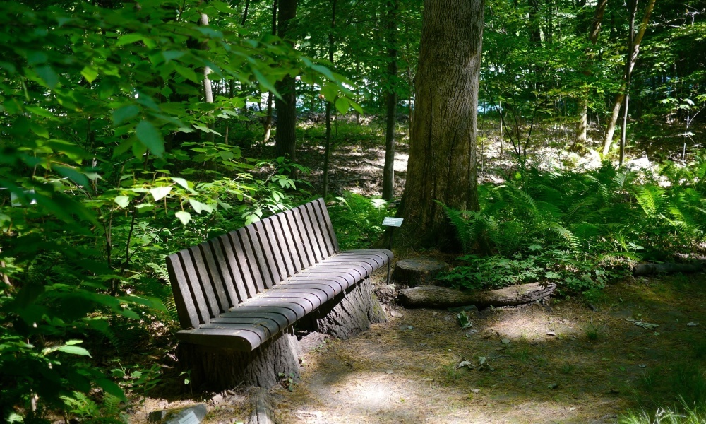 Take a rest on one of the many custom designed benches crafted by local artists